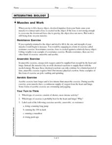 Integrating Biology-Muscles and Work Worksheet