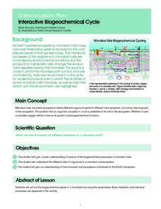 Interactive Biogeochemical Cycle Lesson Plan