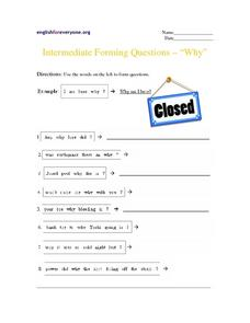"Intermediate Forming Questions ""Why"" Worksheet"