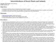 Interrelatedness of Desert Plants and Animals Lesson Plan