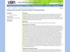 Introduction To Salt Tolerant Plants of the Great Salt Lesson Plan