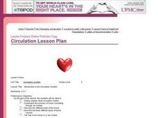 Introduction to the Circulatory System Lesson Plan