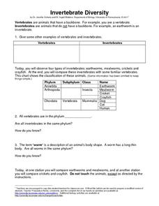 Invertebrate Diversity 6th - 12th Grade Worksheet | Lesson Planet