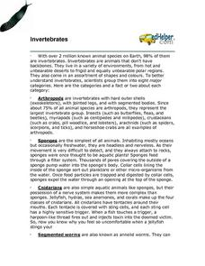 Invertebrates Worksheet