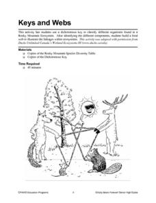 Keys and Webs Lesson Plan
