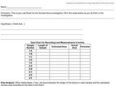 Lab Sheet for Surface Area Investigations Worksheet