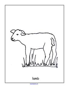 Lamb--  Black Line Drawing Worksheet