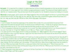 Laugh at the Cat! Lesson Plan