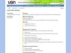 Learn New Words Lesson Plan