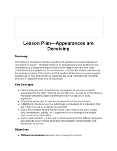 Lesson Plan - Appearances are Deceiving Lesson Plan