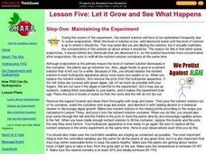 Let it Grow and See What Happens Lesson Plan