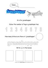 Letter G Activity Worksheet Worksheet