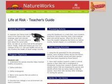 Life at Risk Lesson Plan