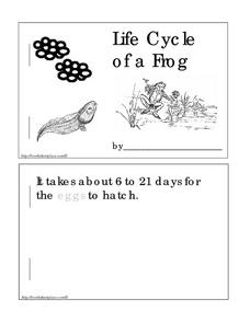 Life Cycle of a Frog: A Mini-Book Worksheet