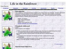 Life in the Rainforest Lesson Plan
