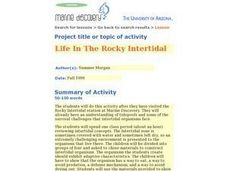 Life in the Rocky Intertidal Zone Lesson Plan