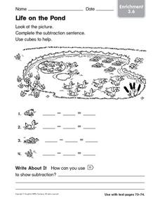 Life on the Pond: Enrichment Worksheet