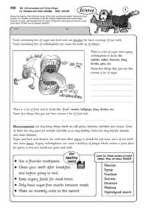 Life Processes and Living Things-Humans and Other Animals Lesson Plan