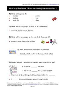 Literacy Revision Worksheet
