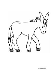 Little Burro Worksheet