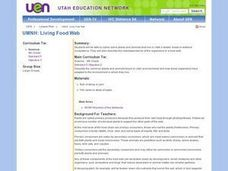 Living Food Web Lesson Plan