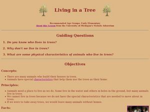 Living In a Tree Lesson Plan