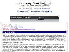 London Whale Died From Dehydration Worksheet
