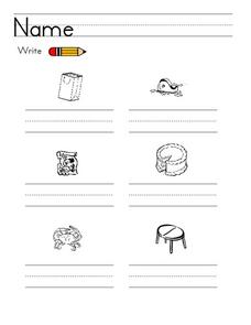 Long And Short Vowel Aa Words Worksheet