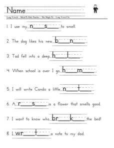 Long Vowels, Silent E Rule Practice Worksheet