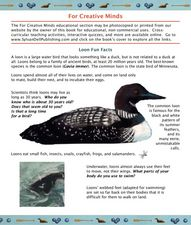 Loon Fun Facts Lesson Plan