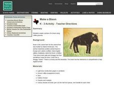 Make a Bison Lesson Plan
