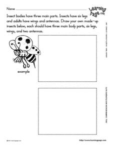 Make-Up Insects Worksheet