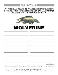 Make Words:  Wolverine Lesson Plan