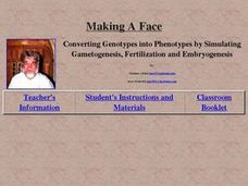 Making A Face Lesson Plan