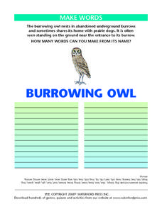 "Making Words Using the Letters in the Words ""Burrowing Owl"" Lesson Plan"