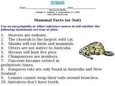 Mammal Facts (or Not) Worksheet