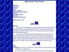 Many Uses of the Forest Lesson Plan