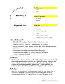 Mapping a Leaf Lesson Plan