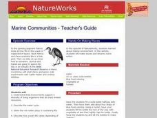 Marine Communities Lesson Plan