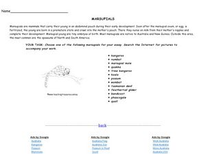 Marsupials Worksheet