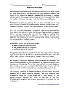 Marvelous Mammals- Non-Fiction Reading Comprehension Worksheets Worksheet
