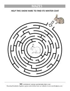 Mazes: Hare Lesson Plan