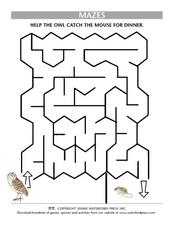 Mazes: Help the Owl Catch the Mouse Lesson Plan