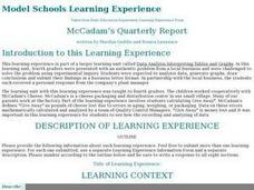McCadam's Quarterly Report Lesson Plan