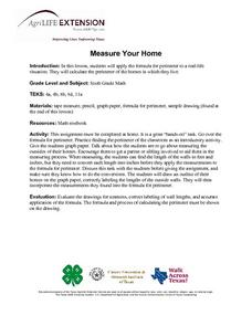 Measure Your Home Lesson Plan