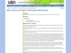 Meat, Poultry, Fish, Eggs: Constructing and Maintaining Lesson Plan