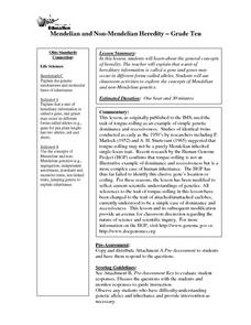 Mendelian and Non-Mendelian Heredity Lesson Plan
