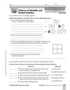 mendelian inheritance of human traits 9th higher ed worksheet lesson planet. Black Bedroom Furniture Sets. Home Design Ideas