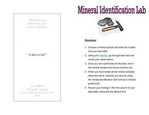 mineral identification lab 6th 8th grade worksheet lesson planet. Black Bedroom Furniture Sets. Home Design Ideas