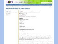 Mineral Replacement in Fossil Formation Lesson Plan